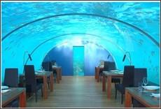 http://travel.spotcoolstuff.com/destinations/asia/ithaa-undersea-restaurant/