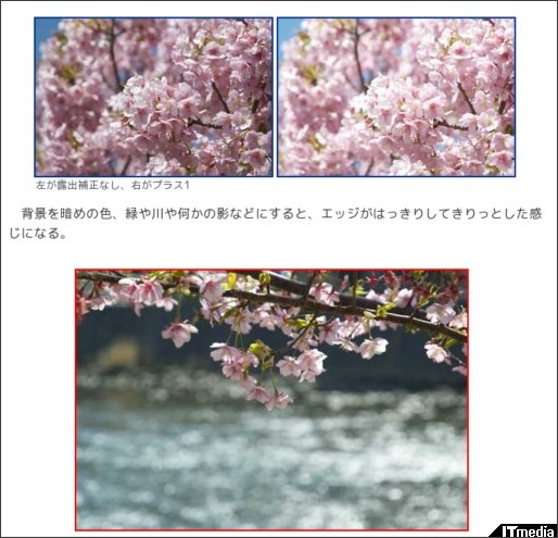 http://plusd.itmedia.co.jp/dc/articles/1103/25/news022.html