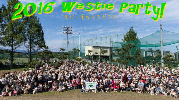 http://westie-party.chu.jp/archives/news/westie-party%ef%bc%812016%e7%84%a1%e4%ba%8b%e7%b5%82%e4%ba%86%e3%81%84%e3%81%9f%e3%81%97%e3%81%be%e3%81%97%e3%81%9f%e3%80%82