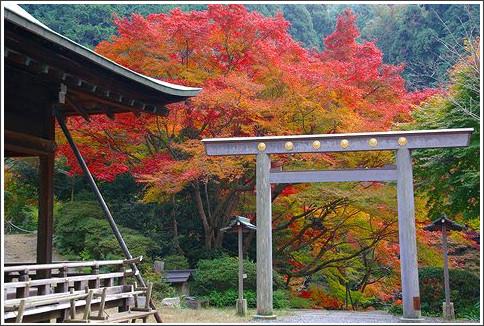 http://www.doco-ico.net/kyoto/sightseeing/course/koyo/himukai.html