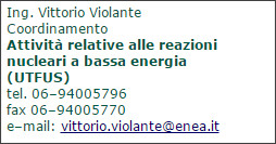 http://www.fusione.enea.it/WHO/orga.html.it