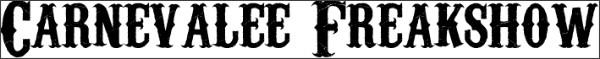 http://www.dafont.com/carnevalee-freakshow.font?back=theme