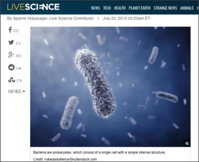 http://www.livescience.com/51641-bacteria.html