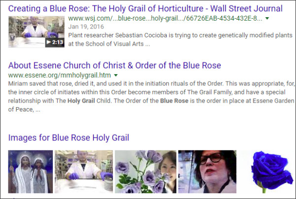 https://www.google.com/search?ei=M7udWtLXK8_ojwPGxoOQAg&q=Blue+Rose++Holy+Grail+&oq=Blue+Rose++Holy+Grail+&gs_l=psy-ab.3...4794.4794.0.5871.1.1.0.0.0.0.163.163.0j1.1.0....0...1.2.64.psy-ab..0.0.0....0.IJf0W5x_ZnQ