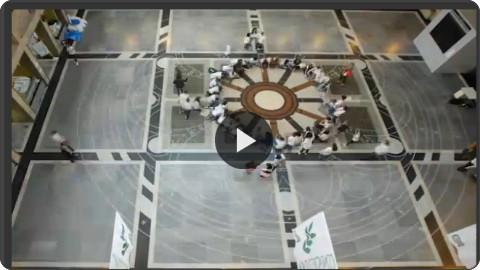 http://video.repubblica.it/edizione/torino/vercelli-il-piu-grande-mandala-al-mondo-e-di-riso/205176/204265?ref=HRESS-23