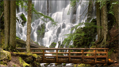 http://www.atrixforums.com/forum/attachments/motorola-atrix-graphics/13002d1373337988-share-your-wallpapers-11823-ramona-falls-oregon-usa-1920x1080-nature-wallpaper.jpg