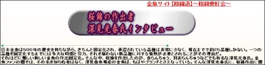 http://www.sakura-nishiki.com/fukuami-interview.html