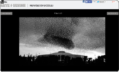 http://www.arte.rai.it/gallery-refresh/nuvole-di-uccelli/239/0/default.aspx