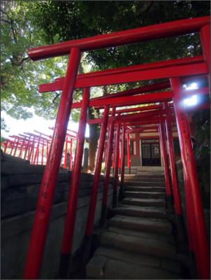 http://static.panoramio.com/photos/large/111883718.jpg
