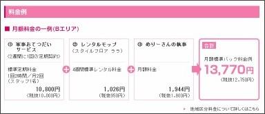 http://www.duskin.jp/service/merrymaids/anshin.html
