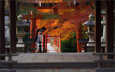 http://blogimg.goo.ne.jp/user_image/51/50/28aa96d848f85016214ea06acc314255.jpg