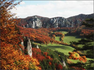 http://fotky.sme.sk/foto/351933/sulovske-skaly-v-jeseni