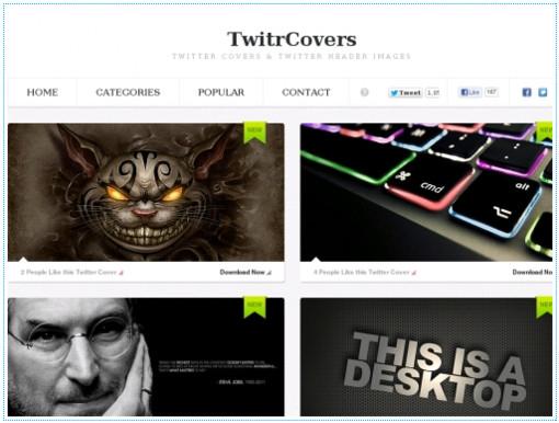 http://www.danshihack.com/2012/10/03/junp/webservices-twitter-covers.html