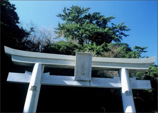 http://nehan-fuji.com/_src/sc1542/89_8CA9.jpg