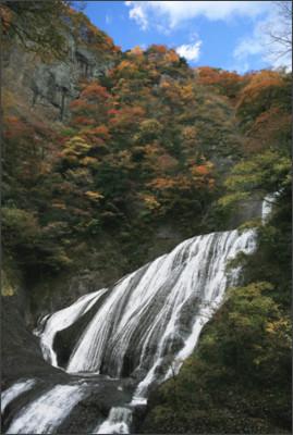 https://www.pref.ibaraki.jp/bugai/koho/kenmin/download/documents/fukuroda_01.jpg