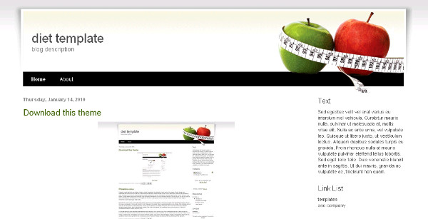 Best Diet Blogger Templates