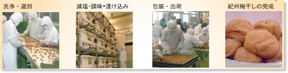 http://www.tanabe-ume.jp/files/6514/2858/0500/P5P6todokumade-ol.pdf