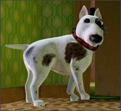 http://vignette3.wikia.nocookie.net/pixar/images/d/df/Scud.jpg/revision/latest?cb=20071015231006