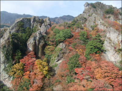 http://livedoor.blogimg.jp/hero1945/imgs/a/2/a2ab2210.JPG