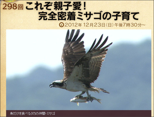 http://www.nhk.or.jp/darwin/broadcasting/review.html