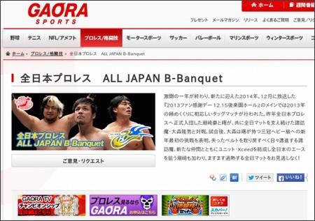 http://www.gaora.co.jp/wrestling/378690