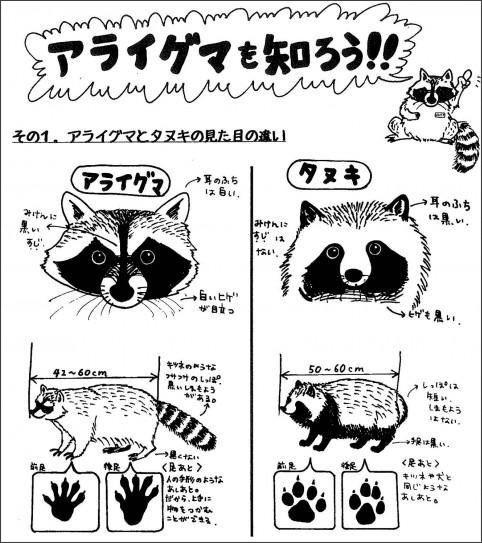 http://livedoor.blogimg.jp/news4wide/imgs/e/f/efd18451.jpg