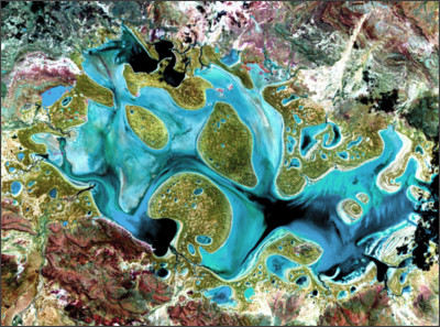 https://eoimages.gsfc.nasa.gov/images/imagerecords/2000/2666/landsat_art_carnegie_lrg.jpg