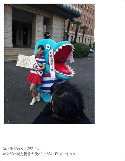 http://ameblo.jp/nigaki-risa/entry-11408893894.html