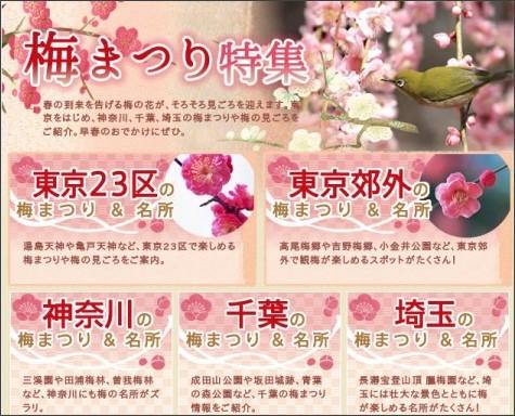 http://flower.enjoytokyo.jp/ume/