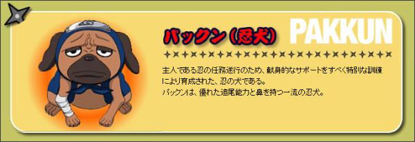 http://www.tv-tokyo.co.jp/anime/naruto2002/chara/chara_konoha23.html