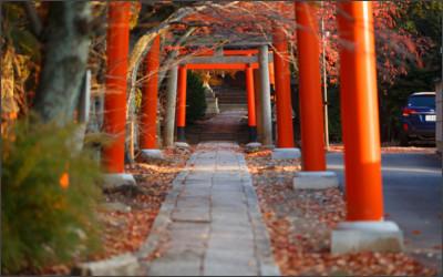 http://blogimg.goo.ne.jp/user_image/0e/49/ee5c78436fa702ab719f6eae6dd895c6.jpg