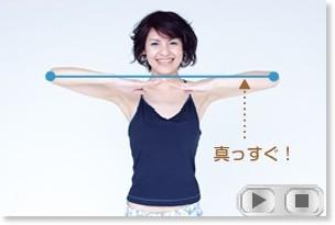 http://nh.nikkeibp.co.jp/article/nhmovie/20080418/101377/