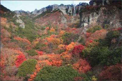 http://poo3nao3.c.blog.so-net.ne.jp/_images/blog/_865/poo3nao3/E5AF92E99C9EE6B893-8de3b.jpg
