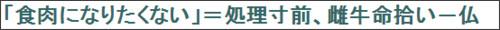http://www.jiji.com/jc/c?g=int_30&k=2015081500347&m=rss