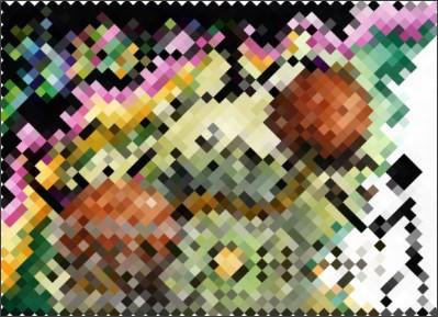 http://www.nuchi-net.jp/home.html