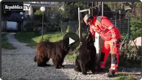 http://video.repubblica.it/cronaca/a-capodanno-?ref=HREC1-11#zerobotti-la-campagna-dei-soccorritori-dellanpas/187752/186657