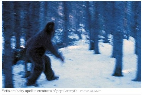 http://www.telegraph.co.uk/news/newstopics/howaboutthat/8401671/Yeti-institute-planned-for-Siberia.html