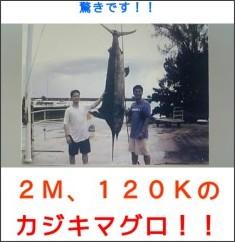 http://plaza.rakuten.co.jp/ffriderfath/diary/200706290000/