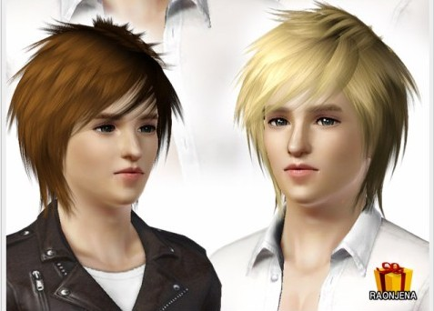 http://www.raonsims.com/item/detail2.php?num=33&cat1=4&page=3&key=