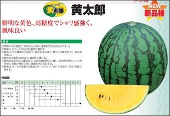 http://www.suika-net.co.jp/pdf/P14-15.ai.pdf