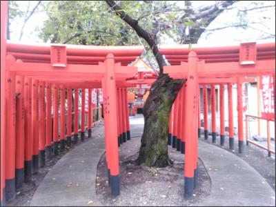 http://blogimg.goo.ne.jp/user_image/2d/c0/cd779683eacbd1307221768724e03c7c.jpg