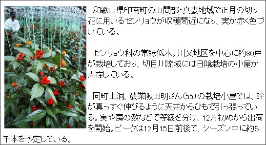 http://www.agara.co.jp/modules/dailynews/article.php?storyid=243121