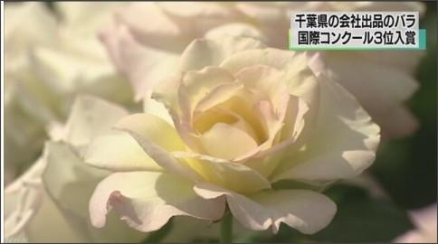 http://www3.nhk.or.jp/news/html/20160605/K10010546761_1606051216_1606051217_01_03.jpg