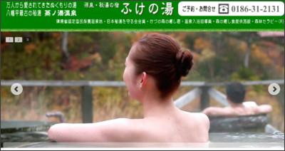 http://www.fukenoyu.jp/