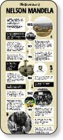 http://www.economicvoice.com/wp-content/uploads/2013/12/mandela-infographic.jpg