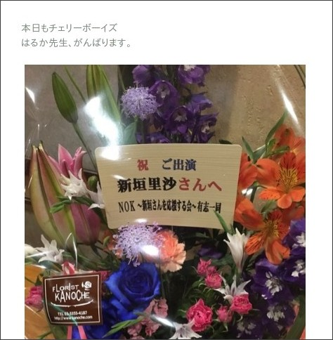 http://ameblo.jp/nigaki-risa/entry-12150165098.html