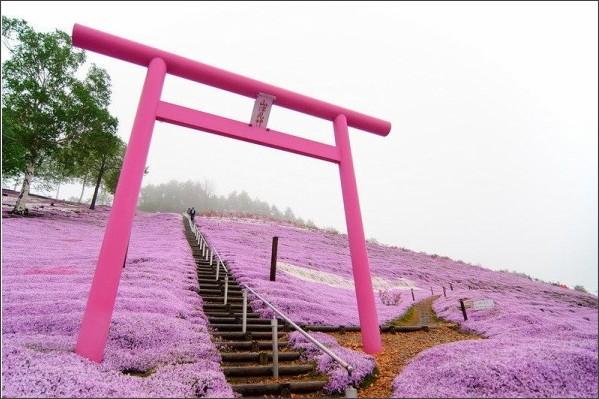 http://pds.exblog.jp/pds/1/201303/02/01/c0072801_7131779.jpg