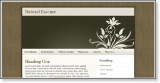 http://templates.arcsin.se/natural-essence-website-template/