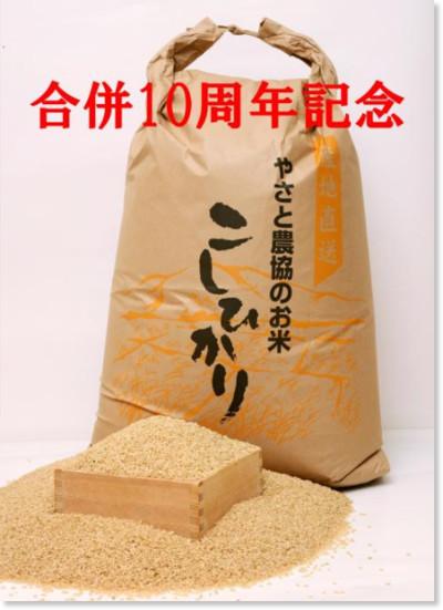 https://www.city.ishioka.lg.jp/furusato_nouzei.php?mode=detail&code=140