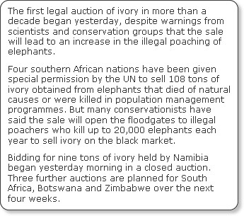 http://www.independent.co.uk/environment/nature/warning-over-poachers-as-ivory-is-sold-legally-976907.html